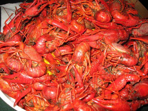 Crawfish Boil in Baton Rouge, LA